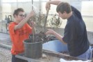 Lenawee Intermediate School District students Colton LaGore (left) and Joe Scales (right) plant trees from the NASCAR Green Clean Air Tree Planting Program Delivered by UPS.