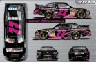 No. 77 Project Pink: Protect Your Pair Toyota Camry Layout